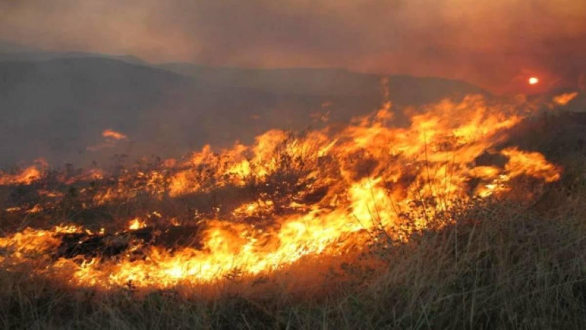 Πυρκαγιές στον Μαραθώνα, Νέα Μάκρη, Βαρνάβα και Γραμματικό