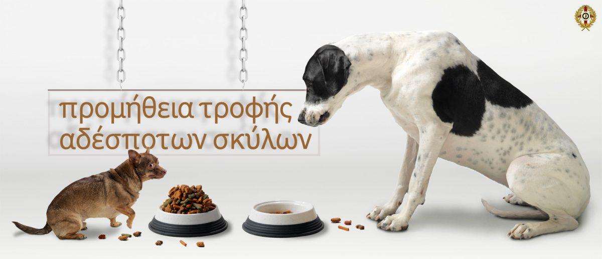 τροφή αδέσποτων σκύλων