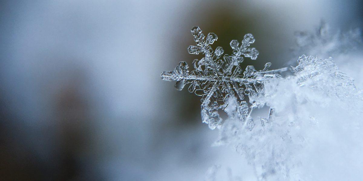 Χαμηλές θερμοκρασίες - παγετός